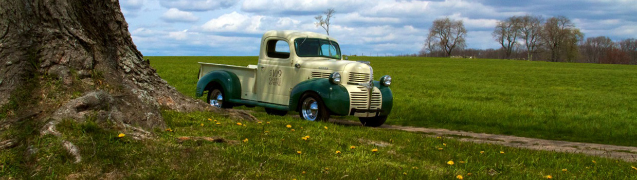 42 dodge in field